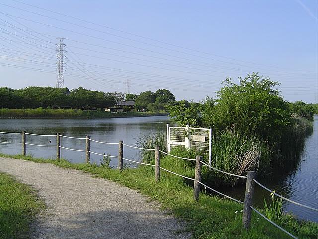 栃木県小山市 大沼親水公園(大沼ため池)